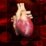 holesterol-srce_th