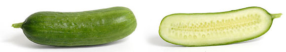 Cucumber-3