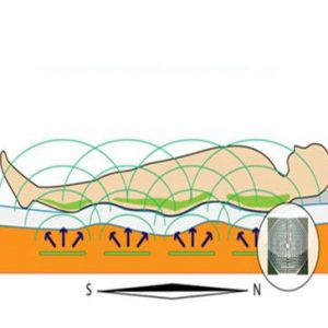 PXD Biotarapeutske ploče 3