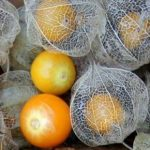 peruanska-jagoda-